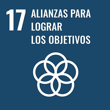 17 ALIANZAS PARA LOGRAR LOS OBJETIVOS