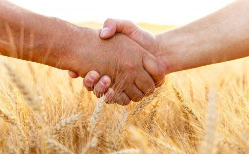 mains partenariat agricole